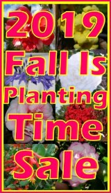 2019 Fall Is Planting Time Sale