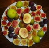 Figs by Color