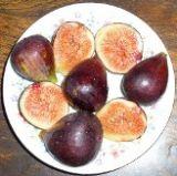 Figs, Figs, Figs