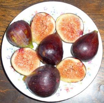 Brown Turkey Fig, Abique Noire Fig, Negro Largo Fig, San Piero Fig