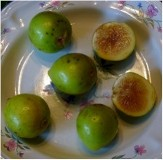 Figs for Containers