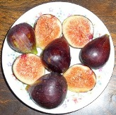 Brown Turkey Fig, a.k.a.  Texas Everbearing Fig,   Abique Noire Fig, Negro Largo Fig, San Piero Fig,