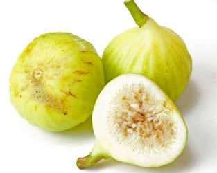 White Marseille Fig, Blanche Fig, Lattarula, Lemon fig